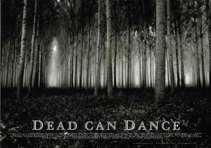 DCD Concert poster
