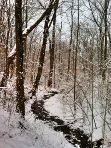 Snowy ravine