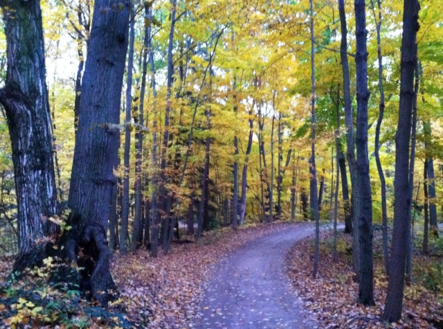 Autumn Hazelhurst